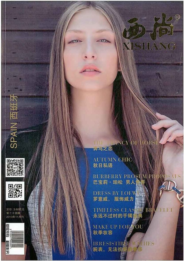Chhinese Cover